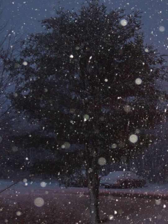 first_snowx