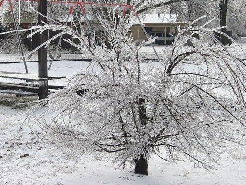 icestorrm1