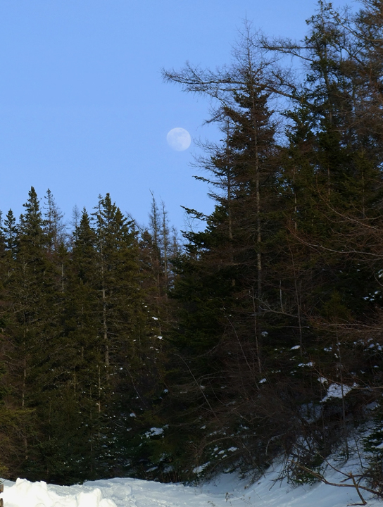 blue_quarry_moon