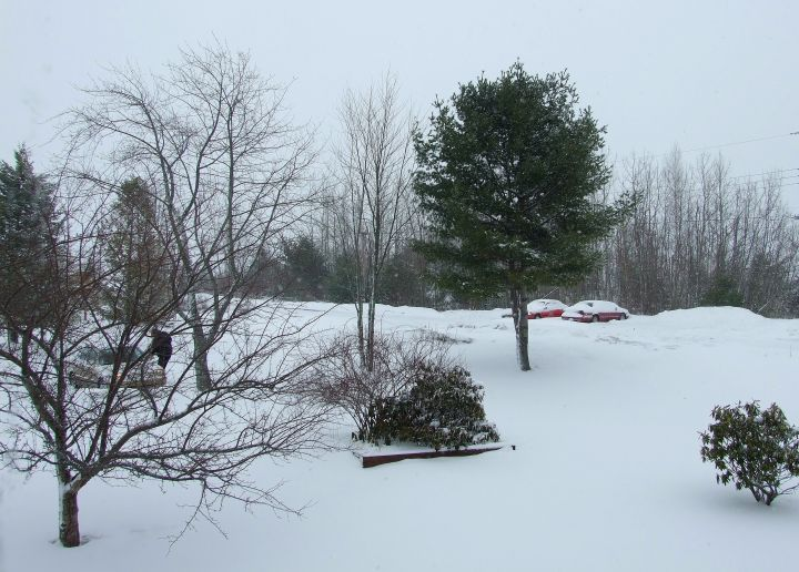 March 24 storm