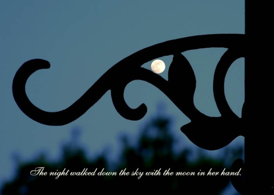 """The night walked down the sky with the moon in her hand."" - F. L. Knowles"