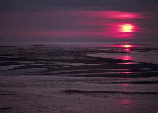 beach_sunset_mudflats