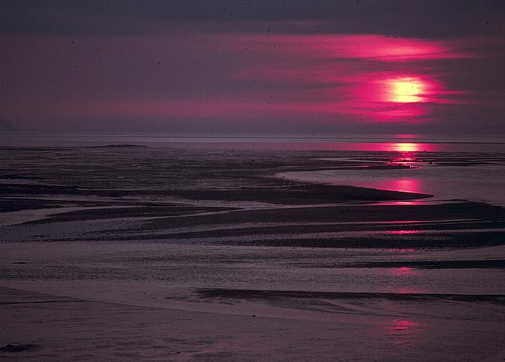 beach_sunset_mudflats