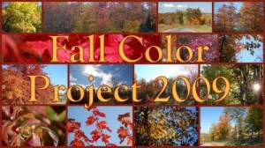 Fall Color Project