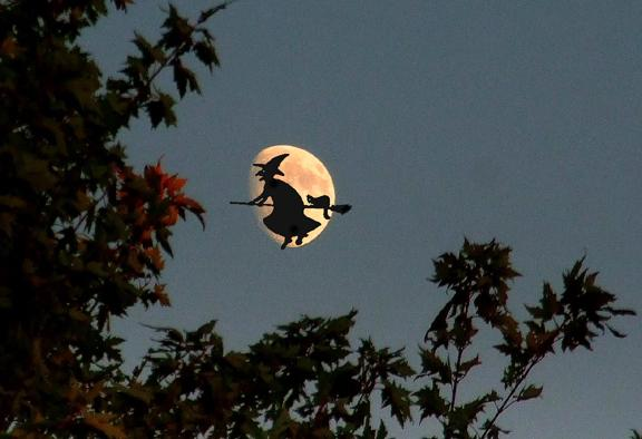 Bewitching moon...