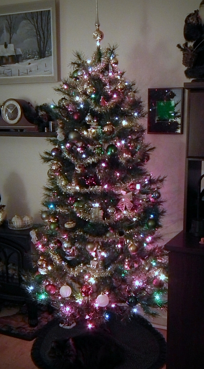 Our family Christmas tree of 2012, just waiting -- not for gifts, but for the arrival of daughters, and grandson, and people we haven't see for a very long time.